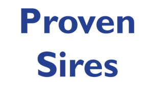 Proven Sires